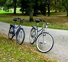 Let's go for a ride in that lovely park... by João Figueiredo