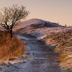 Cold Dawn on Persevearance Hill by Cliff Williams