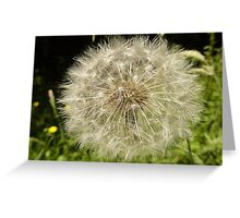 Another Boring Dandelion Fairy Greeting Card