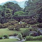 Japanese garden, Shugaku-in Imperial Villa, Kyoto. by johnrf