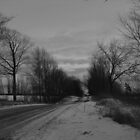 Moody Winter- Black and White by Tracy Faught