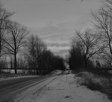 Moody Winter- Black and White by Tracy Wazny