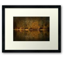 Golden Brown Framed Print