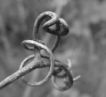 Tendril by Tracy Faught