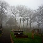 Alderney's Graveyard in the Fog by NeilAlderney