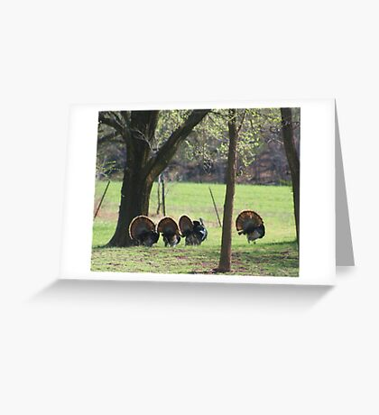 We are out of here Greeting Card