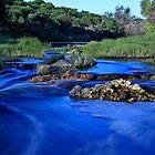 Chapman River ~ Geraldton WA by Pene Stevens