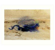 Blue Bottle in Botany Bay on the Back of the Boat Art Print