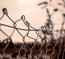 fence by weglet