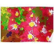 Deep pink daisy chrysanthemums Poster