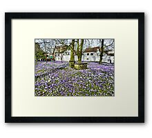 It's That Time of The Year Again. Framed Print