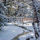 Bridge over Frozen Water by Murph2010