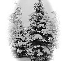 Frosty Wonderland by Ken Fleming