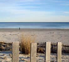 JERSEY SHORE in FEBRUARY    ^ by ctheworld