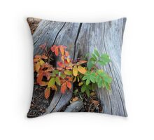 Fall Holly Throw Pillow