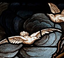 Birds of Peace - Stained Glass by timmcmurdo