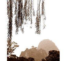 Yangshuo Country -China Photographic Print