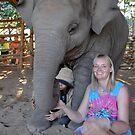 Elephant Heaven by ApeArt
