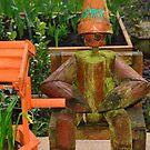 Bert the forgotten flower pot man by Stephen Frost