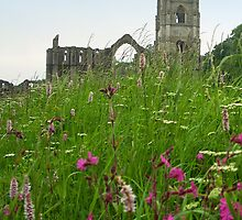 Fountains Abbey  by hootonles