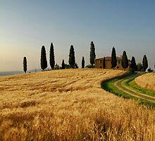 Tuscany Countryside by FOTIS MAVROUDAKIS