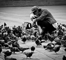 For the Love of Pigeons by dansLesprit