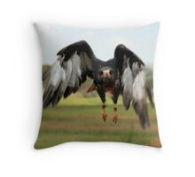 Jackal Buzzard, South Africa Throw Pillow