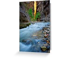 Silky Water in Zion Greeting Card