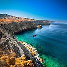 Santa Cruz Island Coast by Andrei I. Gere