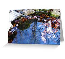 Mirror in the Pond Greeting Card