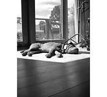 A lie in the sun Photographic Print