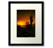 Cactus Sunrise  Framed Print