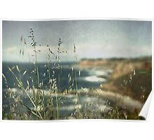 Grass on the Cliffs I Poster