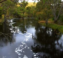 The Glenelg river by Kerry  Hill