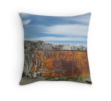 Burnt Gums Throw Pillow