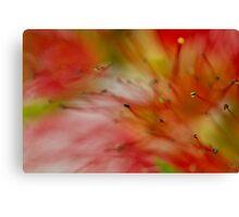 Red Blur Canvas Print