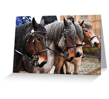 4 in a line Greeting Card