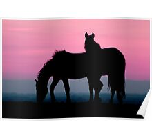 Horse silhouette Poster
