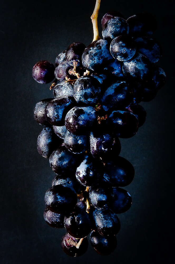 Grapes by Lee LaFontaine