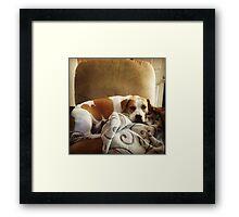 Belle Scrolls Framed Print