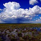 Flooding rains by kurrawinya