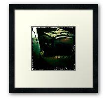 Vintage Frodo Framed Print