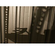 Urban angst - shadows cast from the collapsed shelving in the shed Photographic Print