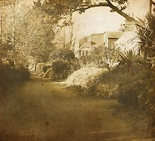 Mainstreet, Sark by Chris Cardwell