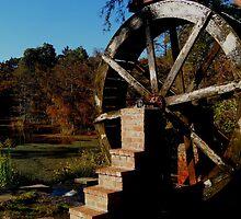 Water Wheel by Dawn di Donato