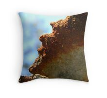 Rusted Metal Throw Pillow