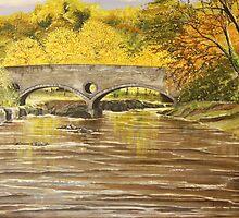 Cenarth Bridge by Annie Lovelass