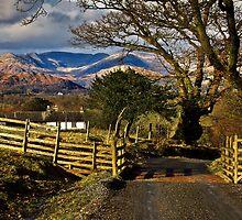 High Wray views over the Cumbrian fells by Shaun Whiteman