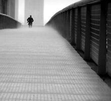 Emerging from the Fog by Brian Gaynor