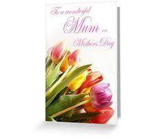 A Tulip Rainbow Greeting Card